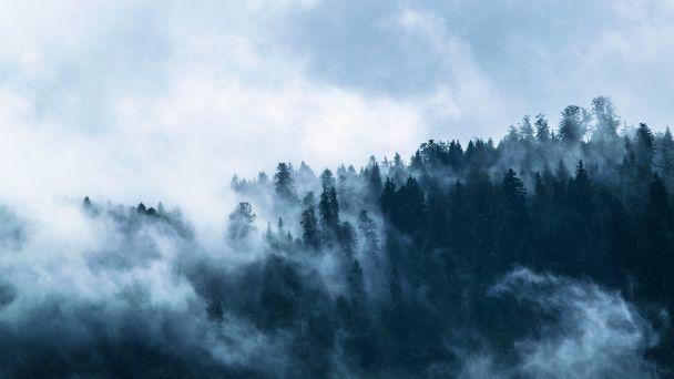 Schôdza Lesnej spoločnosti Ostrý Vrch  ZRUŠENÁ
